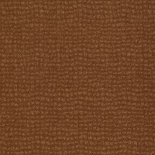 Anderson Tuftex American Home Fashions Pure Essence Roman Brick 00765_ZA863