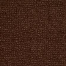 Anderson Tuftex American Home Fashions Pure Essence Nutmeg 00768_ZA863