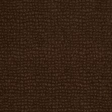 Anderson Tuftex American Home Fashions Pure Essence Cub 00778_ZA863