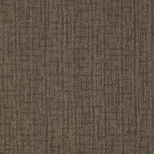 Anderson Tuftex American Home Fashions It's For You Timeless Taupe 00756_ZA864