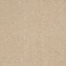 Anderson Tuftex American Home Fashions Joyful Journey Royal Cream 00211_ZA865