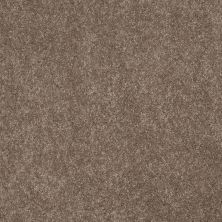 Anderson Tuftex American Home Fashions Joyful Journey Misty Taupe 00575_ZA865