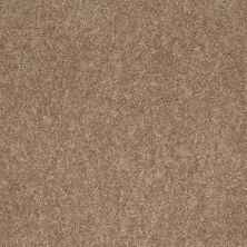Anderson Tuftex American Home Fashions Joyful Journey Hazelnut 00783_ZA865