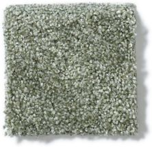 Anderson Tuftex American Home Fashions Aura Floral Spray 00345_ZA868