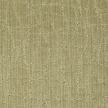 Anderson Tuftex American Home Fashions So Rare Woven Reed 00313_ZA869
