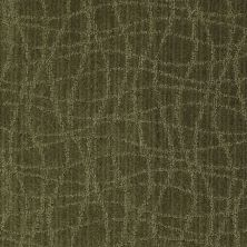 Anderson Tuftex American Home Fashions So Rare Cocktail Olive 00336_ZA869