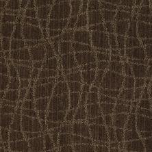 Anderson Tuftex American Home Fashions So Rare Mineral 00579_ZA869