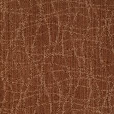 Anderson Tuftex American Home Fashions So Rare Brushed Clay 00685_ZA869