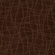 Anderson Tuftex American Home Fashions So Rare Catskill Brown 00777_ZA869