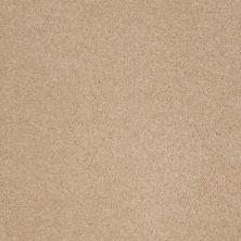 Anderson Tuftex American Home Fashions Devine Delights Nevada Sand 00162_ZA872