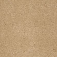 Anderson Tuftex American Home Fashions Devine Delights Sunspot 00263_ZA872