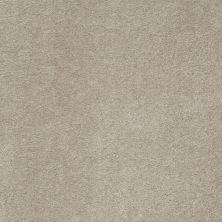 Anderson Tuftex American Home Fashions Devine Delights Limestone 00552_ZA872