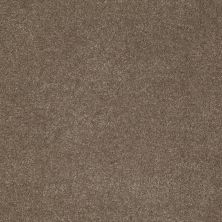 Anderson Tuftex American Home Fashions Devine Delights Misty Taupe 00575_ZA872