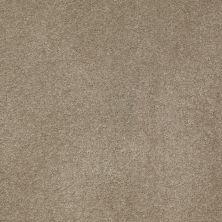 Anderson Tuftex American Home Fashions Devine Delights Driftwood 00753_ZA872