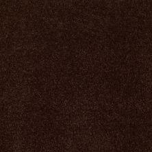 Anderson Tuftex American Home Fashions Devine Delights Chestnut 00778_ZA872