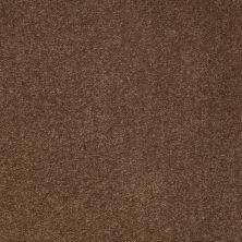 Anderson Tuftex American Home Fashions Devine Delights Hot Cocoa 00785_ZA872