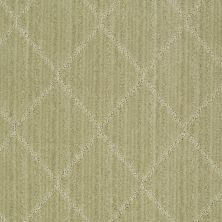 Anderson Tuftex American Home Fashions Love Spell Woven Reed 00313_ZA874
