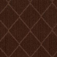 Anderson Tuftex American Home Fashions Love Spell Catskill Brown 00777_ZA874