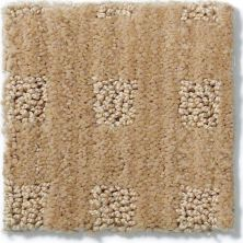 Anderson Tuftex American Home Fashions Life's Memories Crushed Cashew 00263_ZA875
