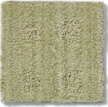 Anderson Tuftex American Home Fashions Life's Memories Woven Reed 00313_ZA875
