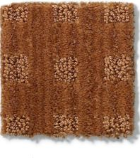 Anderson Tuftex American Home Fashions Life's Memories Melted Copper 00626_ZA875