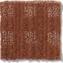 Anderson Tuftex American Home Fashions Life's Memories Brushed Clay 00685_ZA875