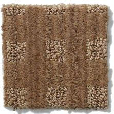 Anderson Tuftex American Home Fashions Life's Memories Gingersnap 00787_ZA875