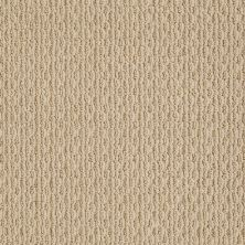 Anderson Tuftex American Home Fashions Proud Design Baked Beige 00173_ZA883