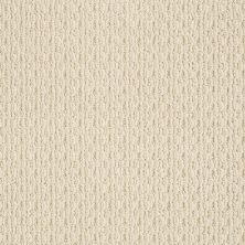 Anderson Tuftex American Home Fashions Proud Design Dream Dust 00220_ZA883