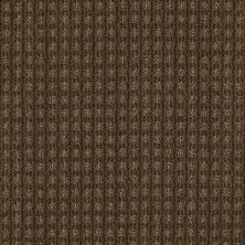 Anderson Tuftex American Home Fashions Living Large Vicuna 00736_ZA884