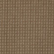 Anderson Tuftex American Home Fashions Living Large Sable 00754_ZA884