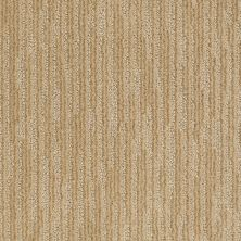 Anderson Tuftex American Home Fashions Just Because Macadamia 00232_ZA885
