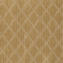 Anderson Tuftex American Home Fashions Desert Diamond Naples Gold 00225_ZA886