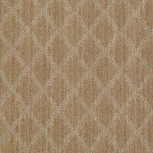 Anderson Tuftex American Home Fashions Desert Diamond Lustrous Tan 00723_ZA886