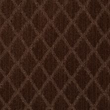 Anderson Tuftex American Home Fashions Desert Diamond Chocolate Wave 00778_ZA886