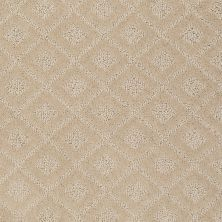 Anderson Tuftex American Home Fashions Best Retreat Humus 00123_ZA894