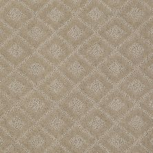 Anderson Tuftex American Home Fashions Best Retreat Oyster 00513_ZA894