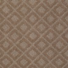 Anderson Tuftex American Home Fashions Best Retreat Sable 00754_ZA894