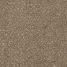 Anderson Tuftex American Home Fashions My Rules Mystic Brown 00756_ZA899