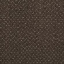 Anderson Tuftex American Home Fashions My Rules Chocolate Curl 00757_ZA899