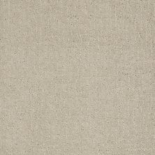 Anderson Tuftex American Home Fashions Let's Mix Oyster 00512_ZA908