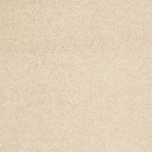 Anderson Tuftex American Home Fashions Nice Dreams II Dream Dust 00220_ZA942