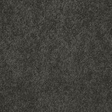 Anderson Tuftex American Home Fashions Lexi Bulldog 00702_ZA944