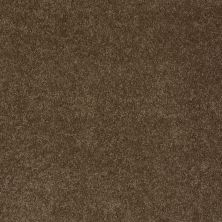 Anderson Tuftex American Home Fashions Lexi Derby Brown 00703_ZA944