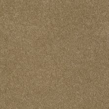 Anderson Tuftex American Home Fashions Ziggy Maple Glaze 00202_ZA945