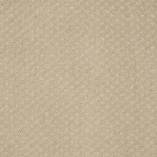 Anderson Tuftex American Home Fashions Sassy Demure 00124_ZA947