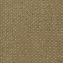 Anderson Tuftex American Home Fashions Sassy Ember 00222_ZA947