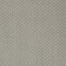 Anderson Tuftex American Home Fashions Sassy Rosetti 00533_ZA947