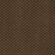Anderson Tuftex American Home Fashions Sassy Truffle 00723_ZA947