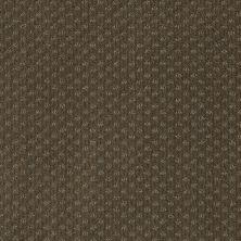 Anderson Tuftex American Home Fashions Sassy Rio Grande 00732_ZA947